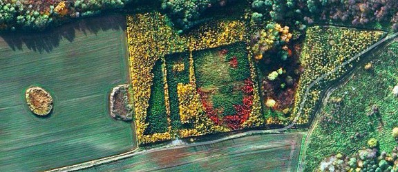 Zielony herb Elbląga widziany z satelity