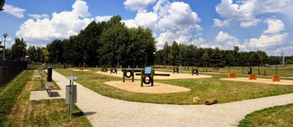 Czy w Elblągu powstanie park dla psów?