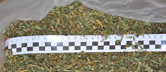 Ponad kilogram marihuany o wartości 32 tys.zł znaleziono u 21-latka z ul. Wiejskiej