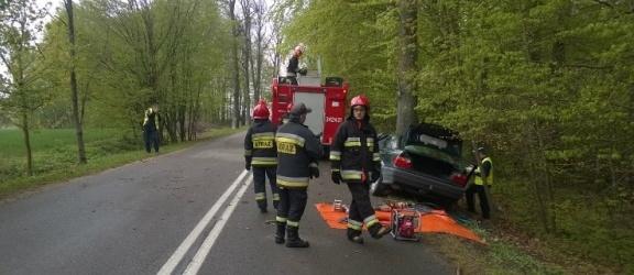Pijany kierowca, żona zginęła a prokurator... umorzy sprawę