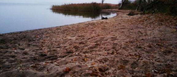 Na dzikiej plaży znaleziono ciało noworodka