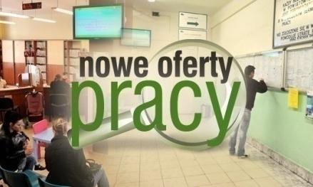 AKTUALNE OFERTY PRACY TORUŃ I OKOLICE