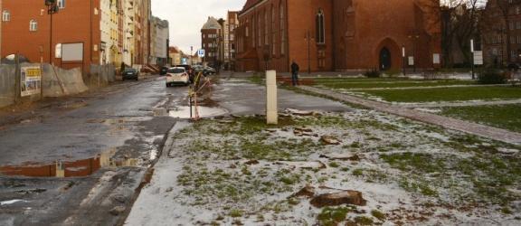 Ulica Rybacka: były drzewa, nie ma drzew