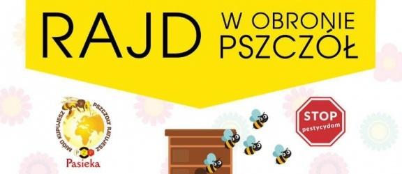 """Rajd """"Maluchów"""" w obronie pszczół zawita do Elbląga!"""