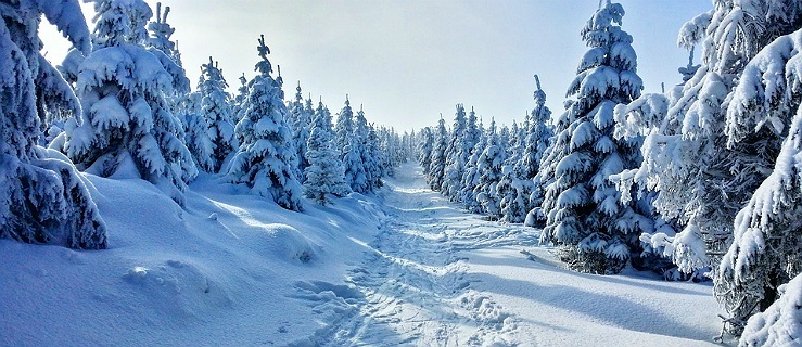 Jak aktywnie spędzić święta Bożego Narodzenia i Nowy Rok?