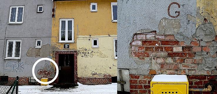 Lokatorzy z ul. Pawiej: