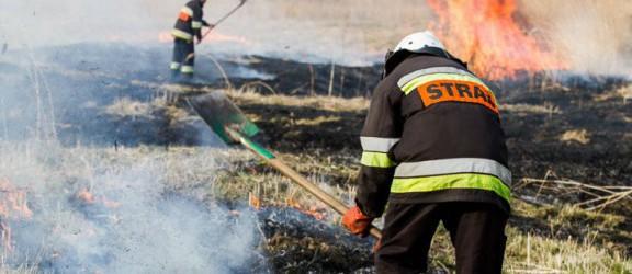 Strażacy z Krzewska walczyli z płonącymi trawami (foto)