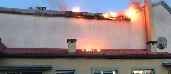 Elbląg. Pożar domu na Dębowej