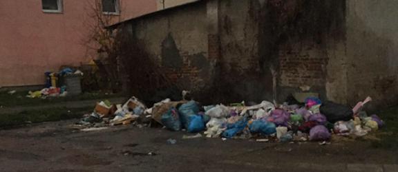 Elbląg. Nielegalne wysypisko śmieci