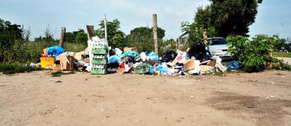 Elblążanie wywożą masowo śmieci do Bażantarni. Efekt ustawy śmieciowej?