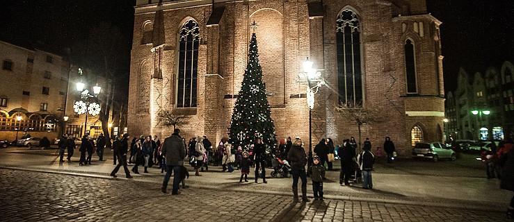 Choinki i ozdoby świąteczne rozświetlą miasto